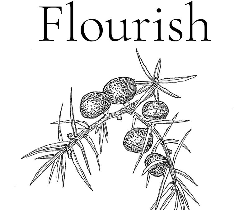 Flourish 2020